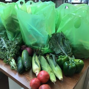 Cosecha bags. Corn, potatoes, cucumbers, green peppers, kale.